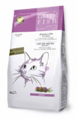 Green Fish Cat Dry