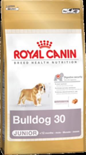 BULL DOG 30 JUNIOR