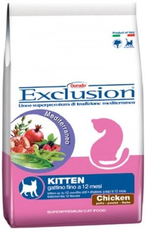 CAT KITTEN POLLO - Exclusion