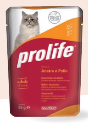 Adult Cat Anatra e Pollo