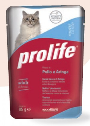 Adult Cat Pollo e Aringa