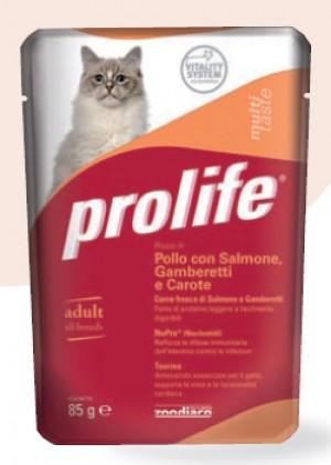 Adult Cat Pollo con Salmone Gamberetti e Carote