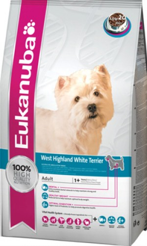 ADULT WEST HIGH. WHITE TERRIER